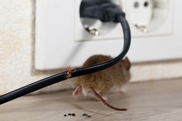 事故防止! 漏電が起こる原因を知って、きちんとした対策を行おう!